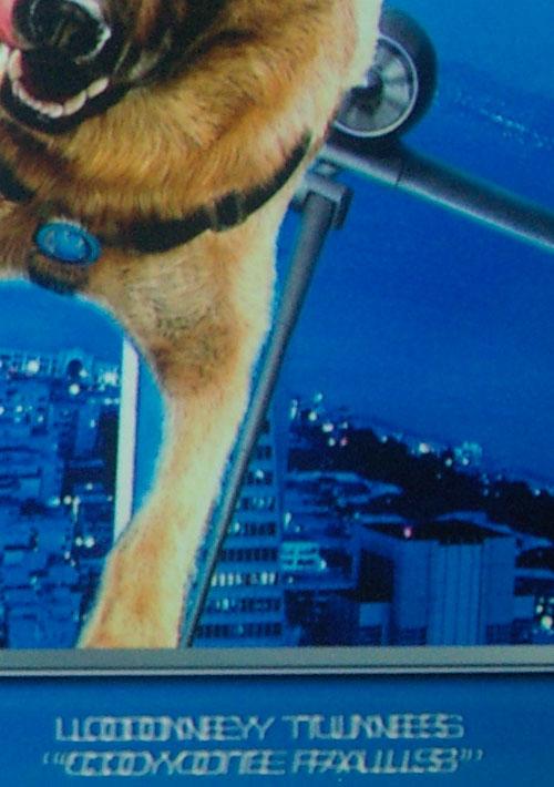 Cats & Dogs 2 menu closeup