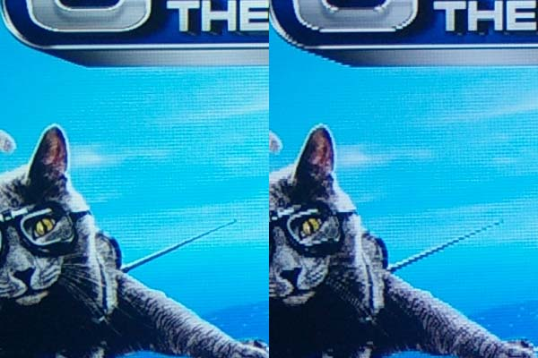 A jaggie detail on Cats and Dogs 2, 3D. In 2D mode left, 3D right